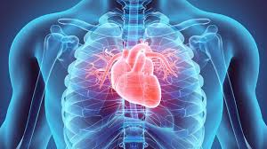 Weight Loss And Heart Disease